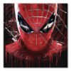 tableau spiderman pop art